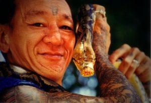 Indonesien_Snake