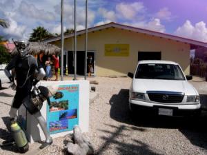 Bonaire Tropical In