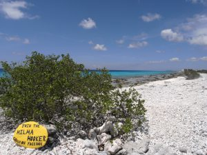 Bonaire Tropical In